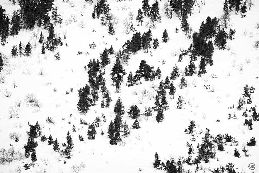 paisaje montañas nevadas blanco i negro